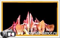 """""""Крылья""""- восточный танец живота. Групповое выступление учеников школы восточных танцев Зейнаб."""